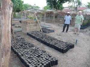 """width=300 height=224 />Sie kultivieren und veredeln in Eigenregie Forst- und Obstbäume und verkaufen sie auf dem lokalen Markt. Die Pflanzung erfolgt durch Privatleute, die dadurch u.a. Obstgärten aufbauen. Über <b>Anwachsprämien</b> stellt Pro Benin e.V. zusätzlich sicher, dass die Bäume gepflegt werden und die kritische Zeit im ersten Jahr überstehen. Die Gärtner qualifizieren wiederum weitere Kollegen, so dass sich der Effekt im <b>Schneeball-System</b> vervielfältigen und flächendeckend ausbreiten kann.In der """"kleinen"""" Regenzeit 2006 und 2007 wurden mit unserer Unterstützung zusätzlich rund <b>33.000 Bäume</b>, davon 16.500 Fruchtbäume erfolgreich, angepflanzt. Beim zweiten Zuschuß wurde Sojasaatgut vorfinanziert, dessen Rückzahlung im Folgejahr mit Pflanzprämien verrechnet wurde.Mit dem dritten Zuschuß von 2009 kann nun zum einen der <b>Sojaanbau</b> gesteigert und gefördert und zum anderen für Prämienzahlungen von Baumpflanzungen eingesetzt werden.  Die Sojabohne – ohne jedes chem. Produktionsmittel – ersetzt die empfindliche Baumwolle und verbesster die Bodenfruchtbarkeit für nachfolgende Aussaaten von Mais oder Hirse. In 30 Dörfern wurden bis 2009 zusammen 167.700 Pflanzen gesetzt. Bis Ende 2010 – 14 Jahre nach Projektbeginn -  gibt es 200.000 Bäume mehr. Mit der Unterstützung können Berater vor Ort das Projekt in weiter entfernte Dörfer kommunizieren.<span style="""